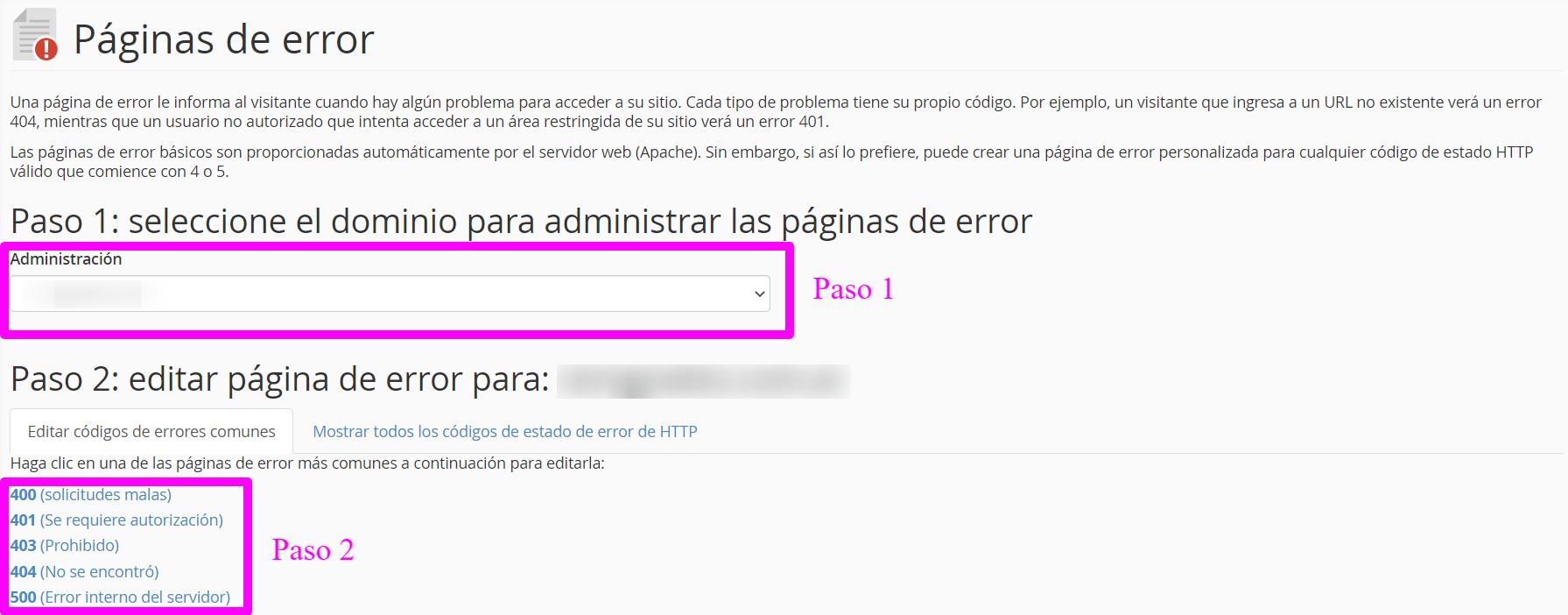 ¿Cómo crear páginas de error personalizadas en cPanel?